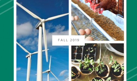 Workshops to focus on Energy, Environment, and Water
